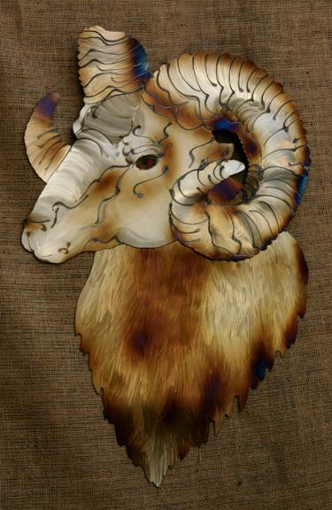 Bighorn Sheep (Ram)