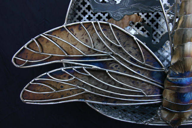 dragonfly wings to show depth