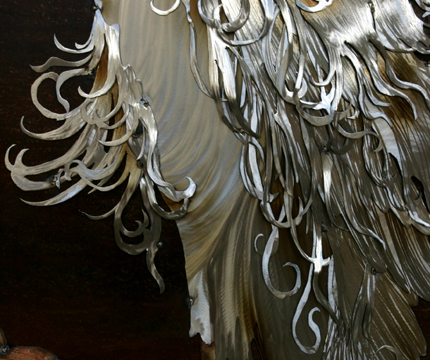 Close up of chest feathers.