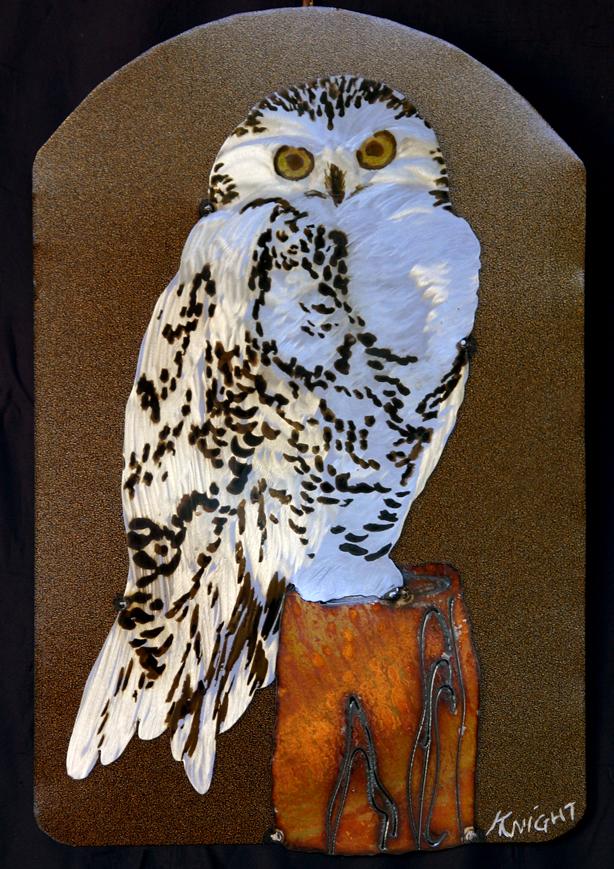 various owls